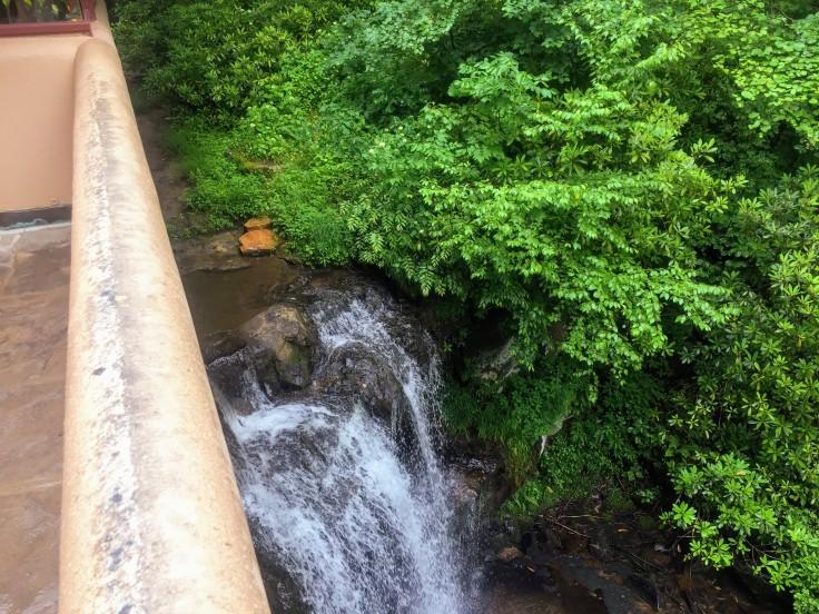 2017-06-22 Fallingwater 006d