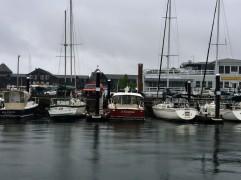 2017-07-07 Newport 09