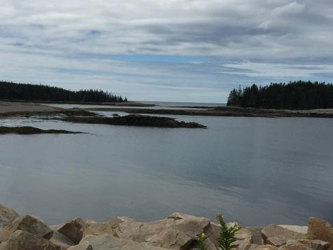2017-07-25 Acadia Scoodic 04