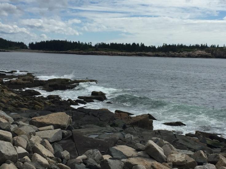 2017-07-25 Acadia Scoodic 11