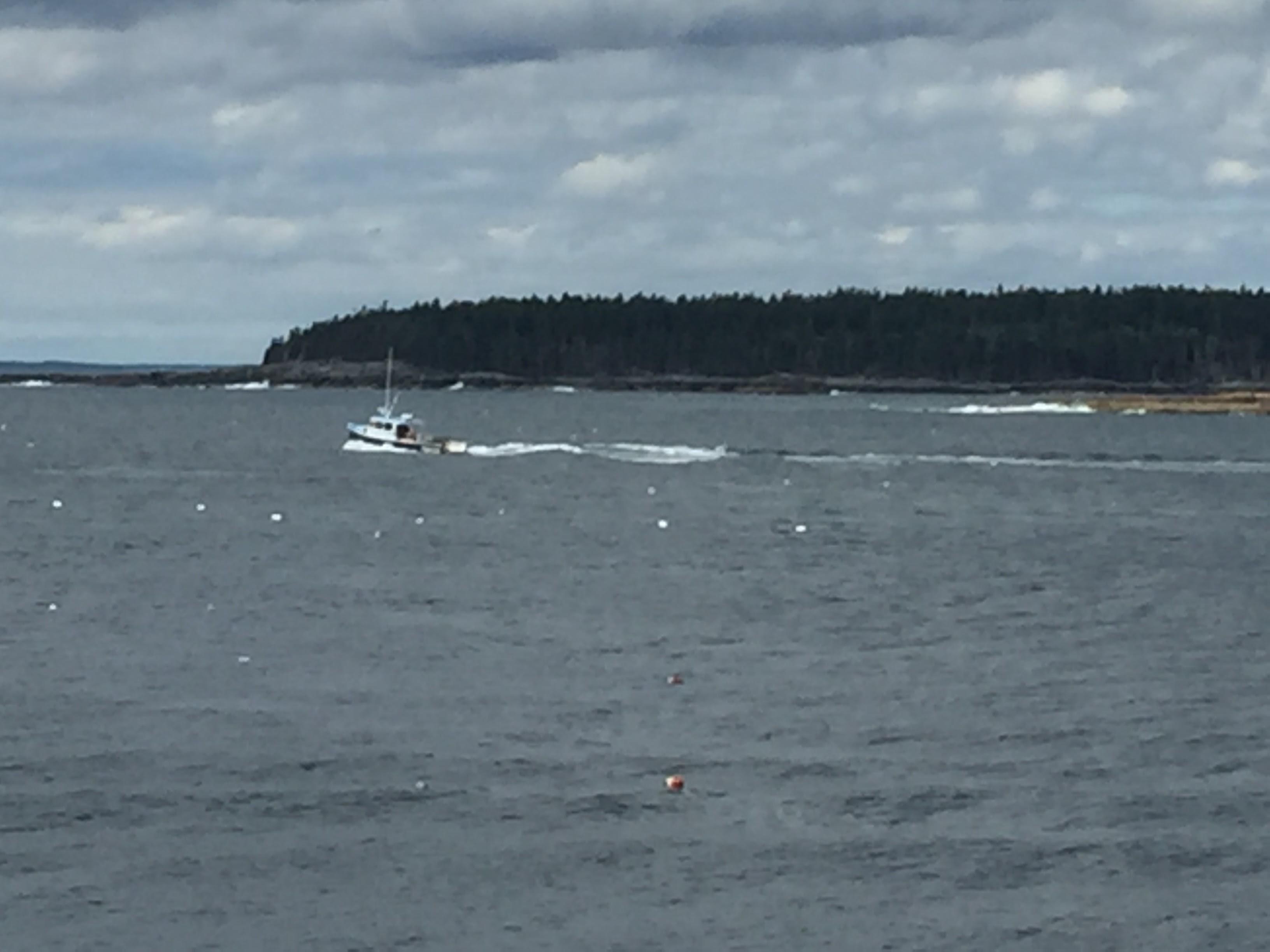 2017-07-25 Acadia Scoodic 13