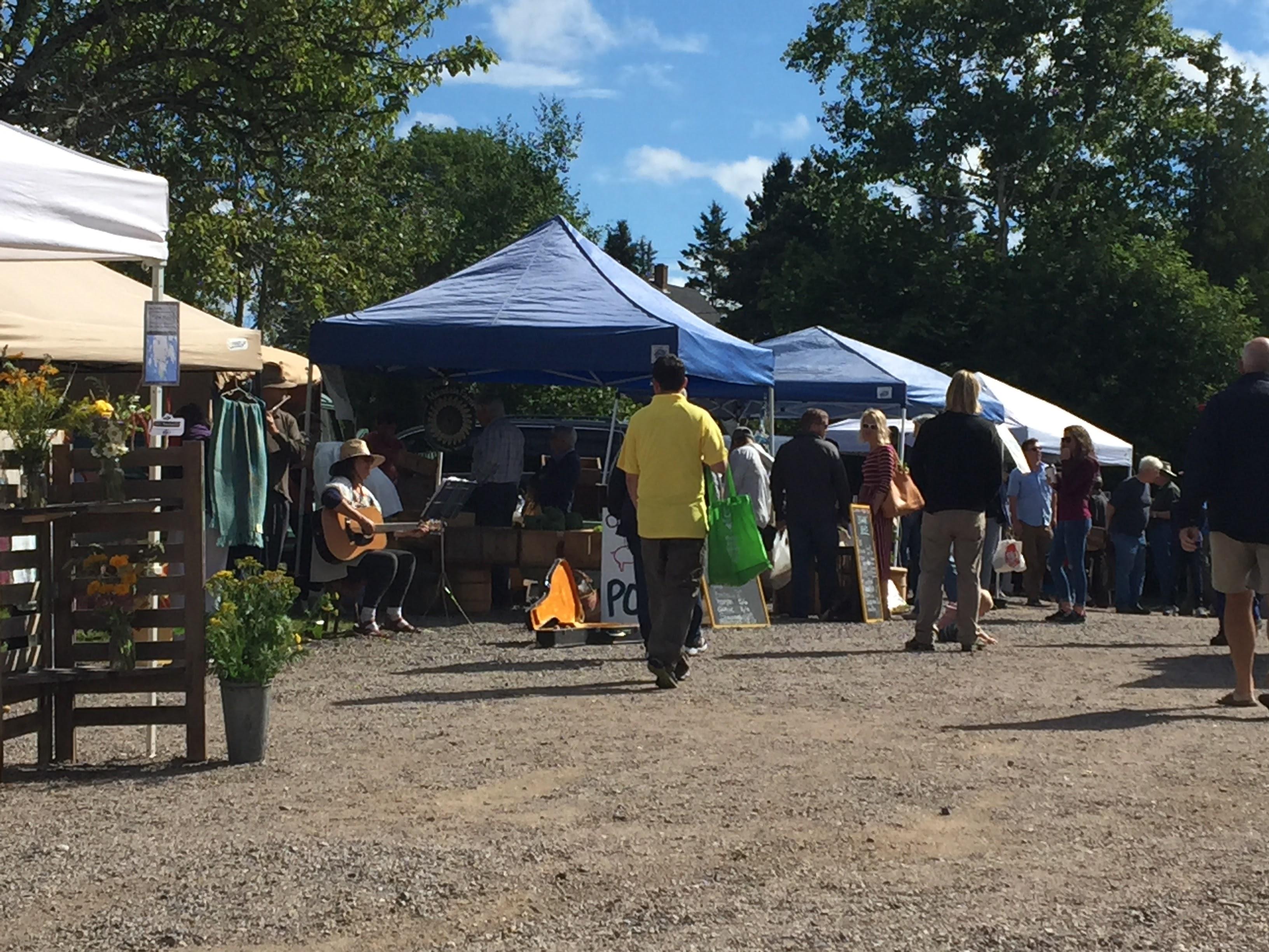 2017-07-25 Scoodic - Winter Harbor Farmers Market 01