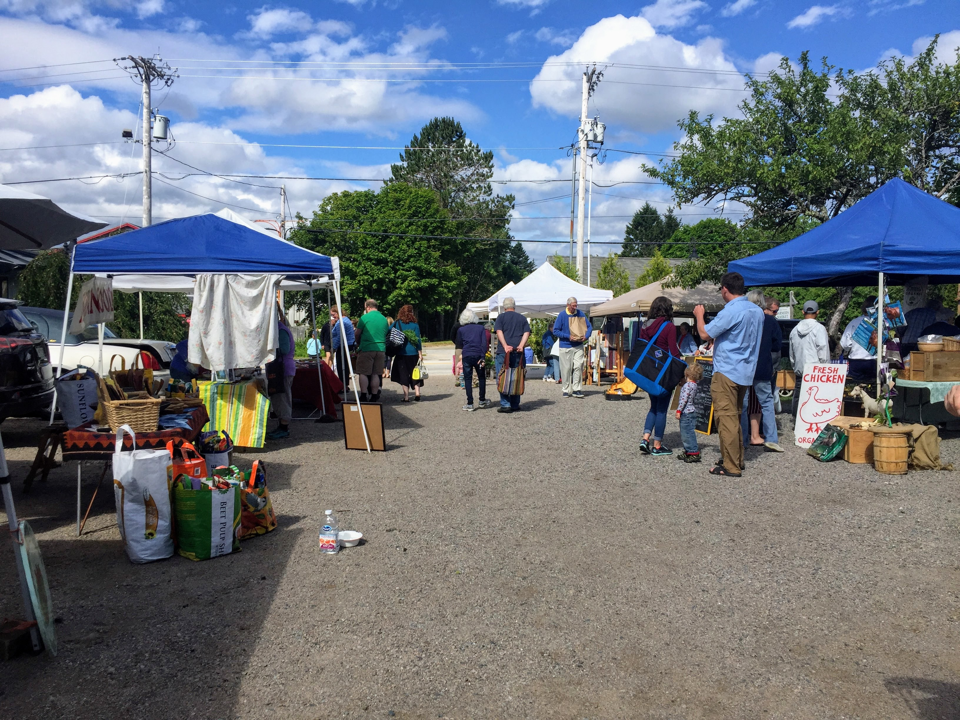 2017-07-25 Scoodic - Winter Harbor Farmers Market 02