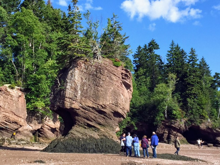 2017-07-29 Hopewell Rocks 04