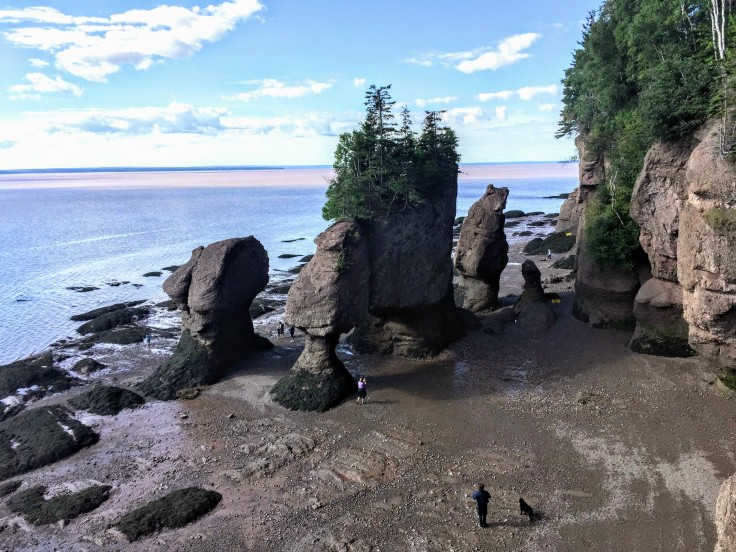 2017-07-29 Hopewell Rocks 11