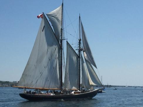 2017-08-01 Halifax - Tall Ships 02