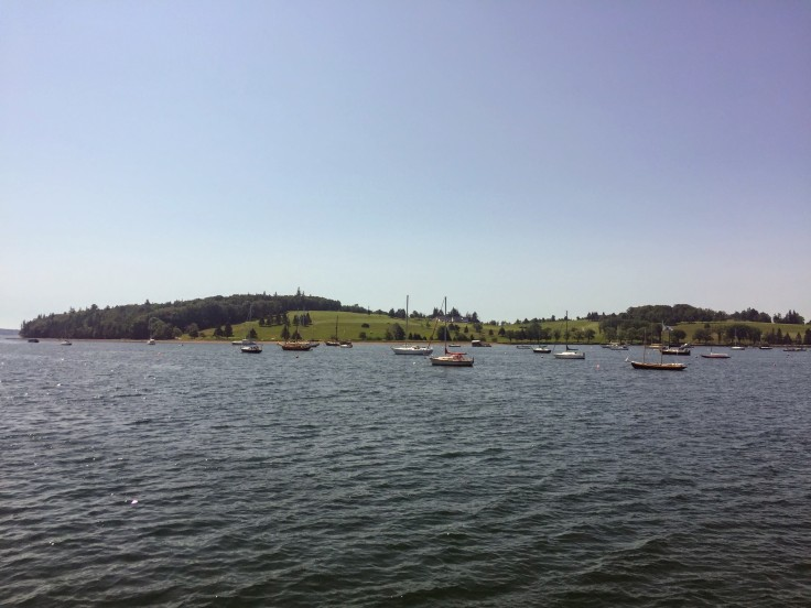 2017-08-02 Graves Island 03