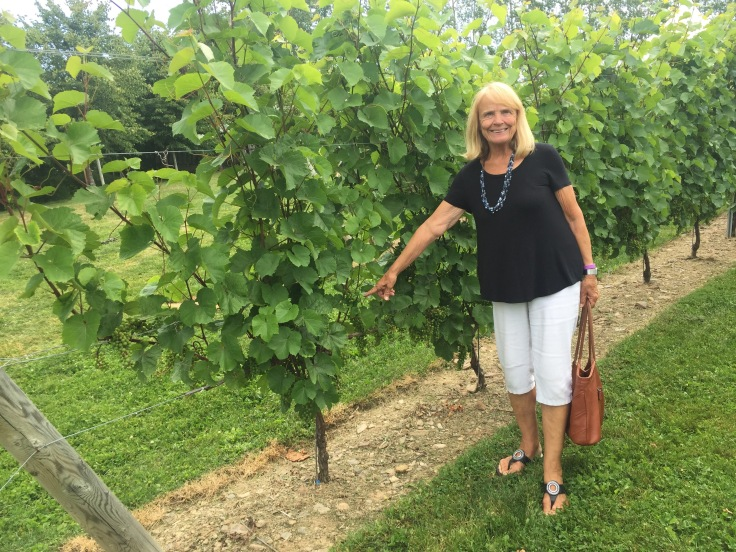2017-08-03 Luckett Winery 3