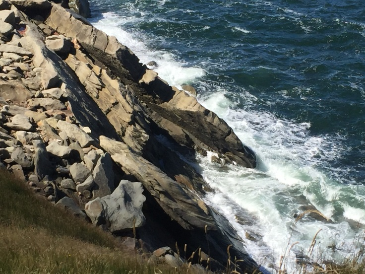 2017-08-09 Cape Breton Seaside 15