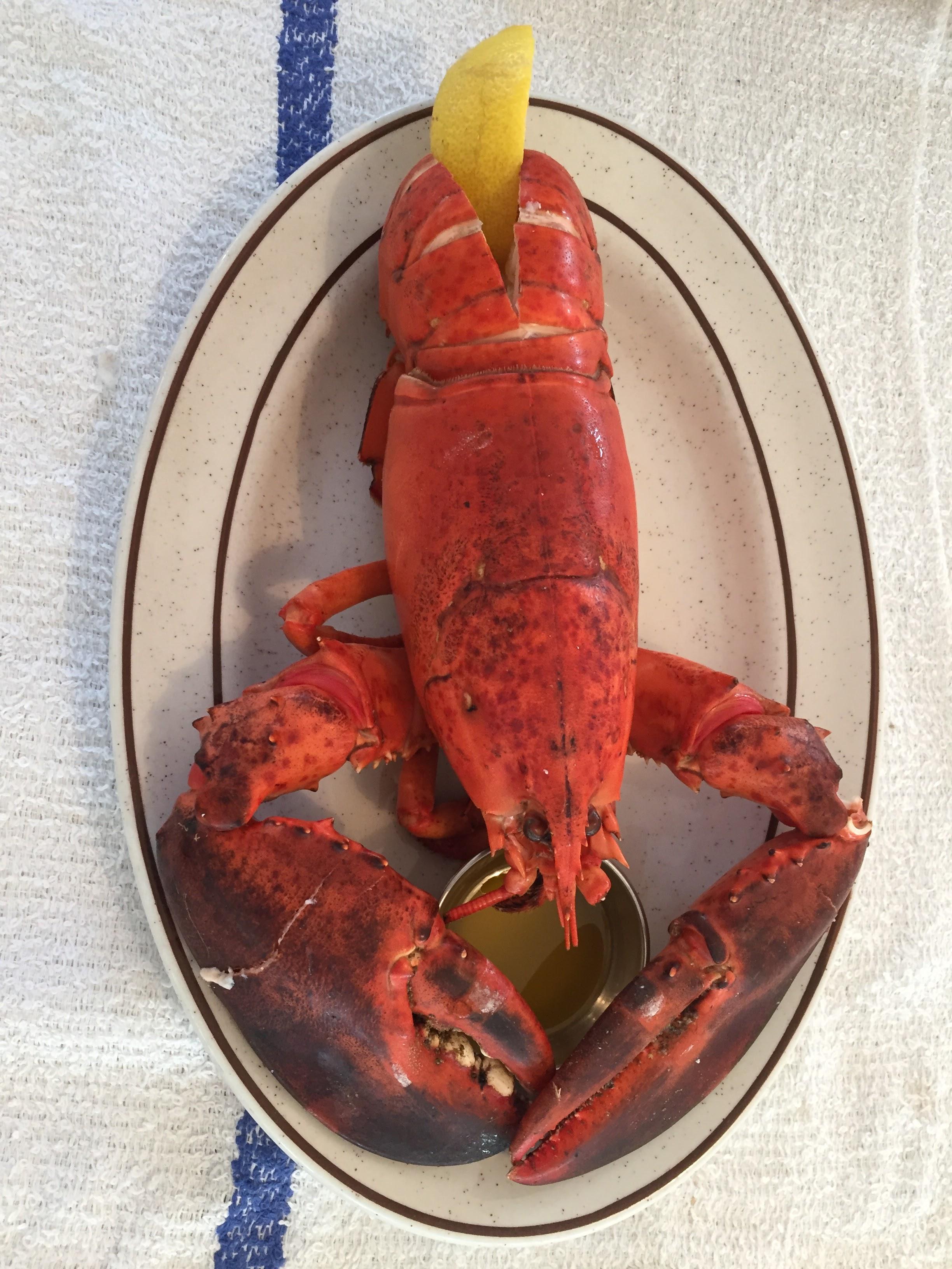 2017-08-10 Lobster Dinner 03