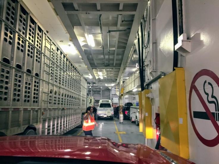 2017-08-28 Tobermory 4 Ferry