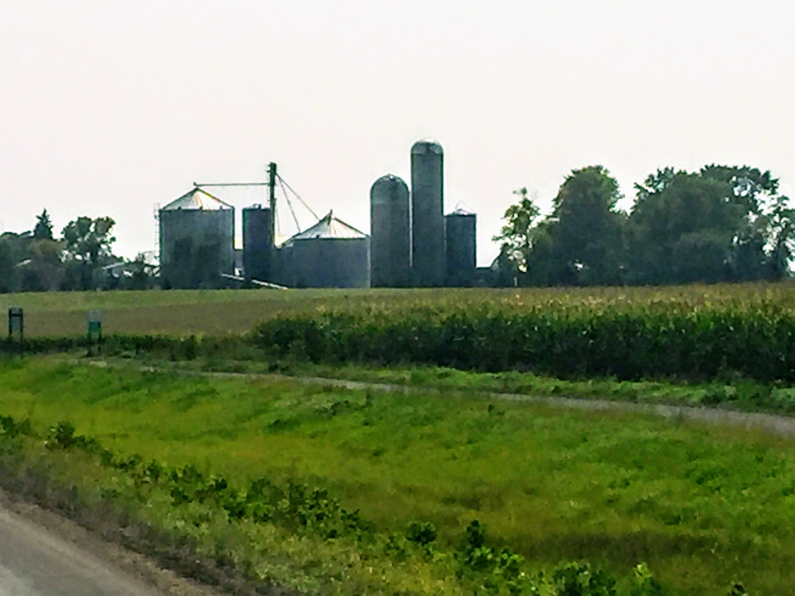 2017-09-13 Minnesota Farms 03