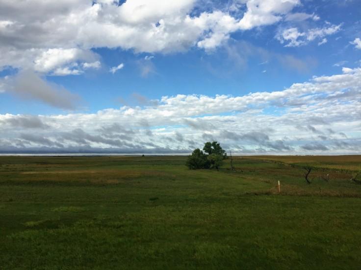 2017-09-15 LIW 02a Homestead Prairie