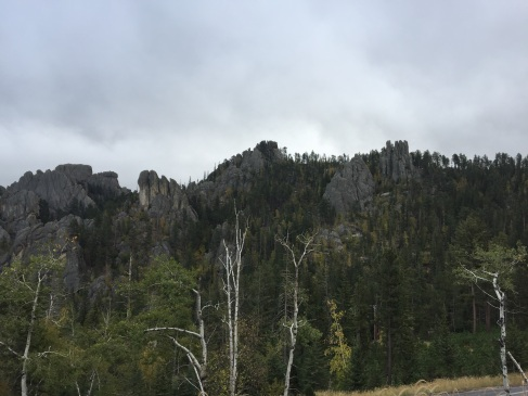 2017-09-17 Black Hills 04 Needles