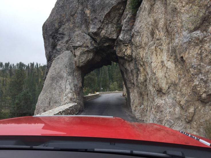 2017-09-17 Black Hills 05 Needles Tunnel 2