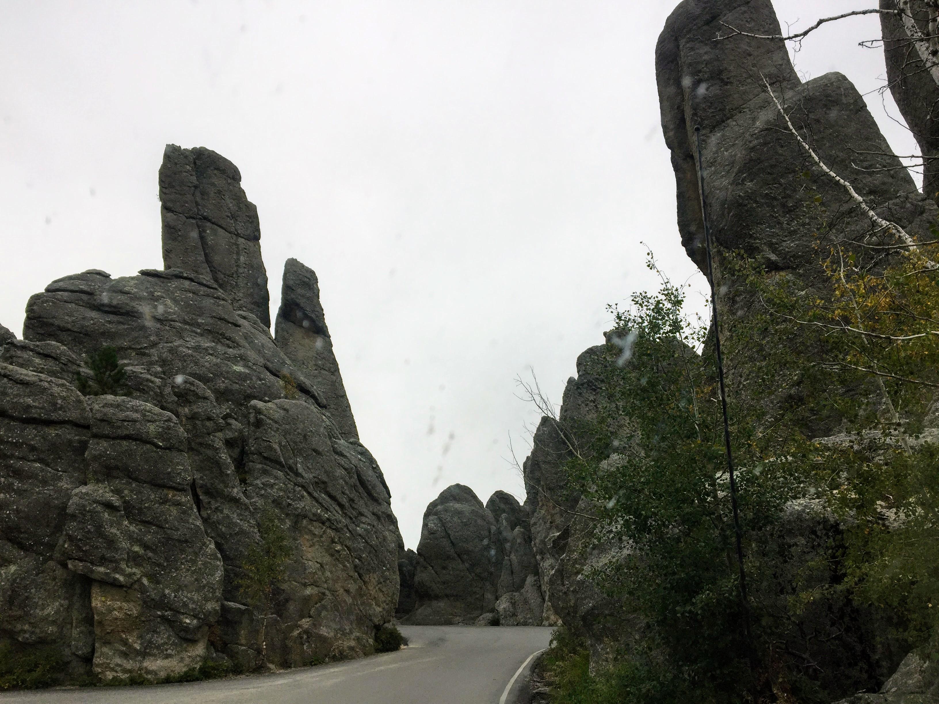 2017-09-17 Black Hills 07 Needles