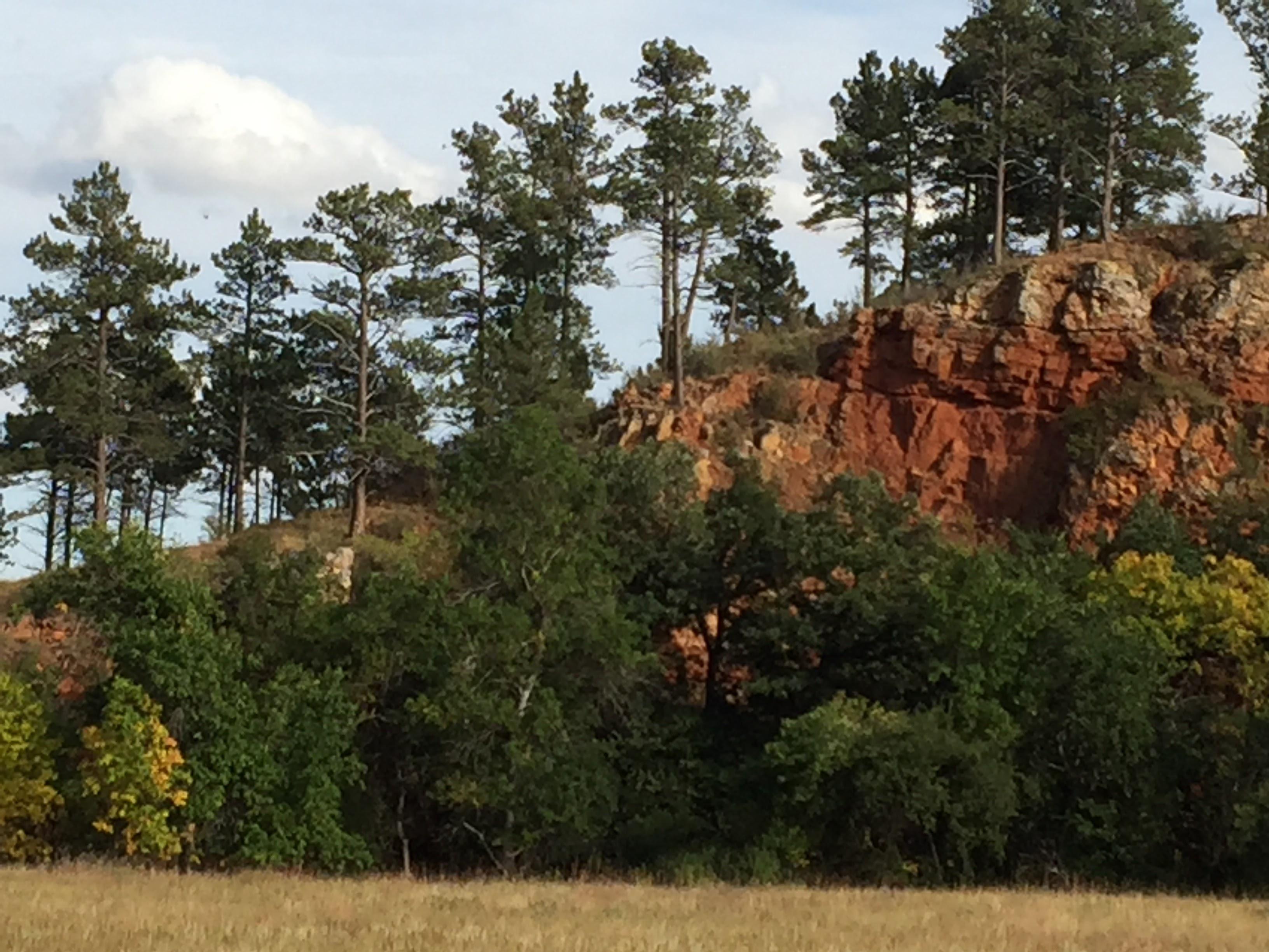 2017-09-17 Black Hills 31 Custer Wildlife 03