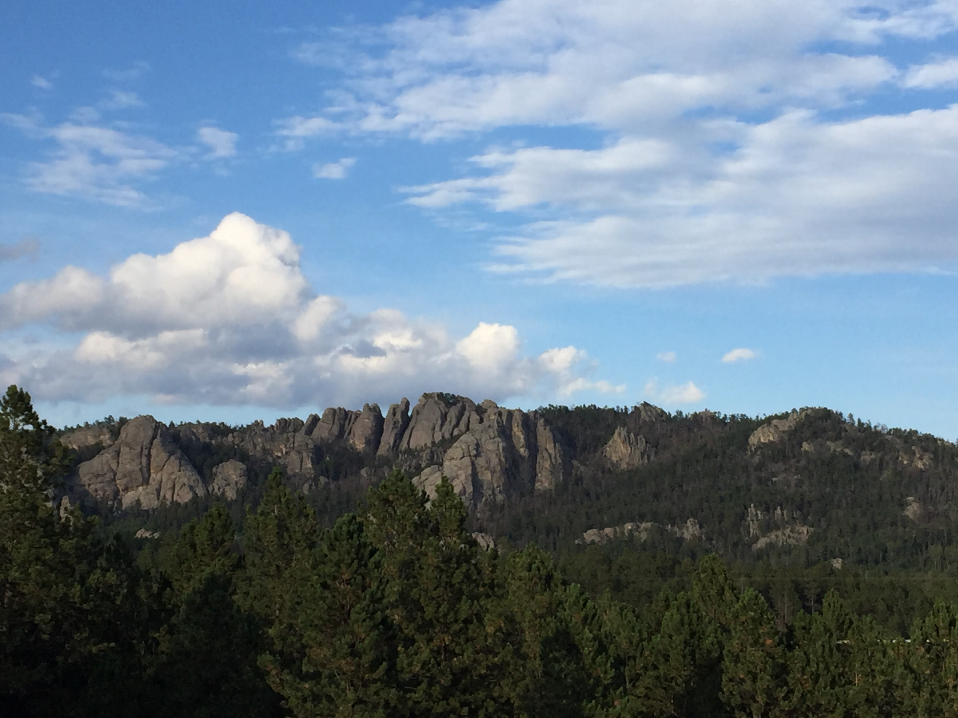 2017-09-17 Black Hills 31 Custer Wildlife 03a