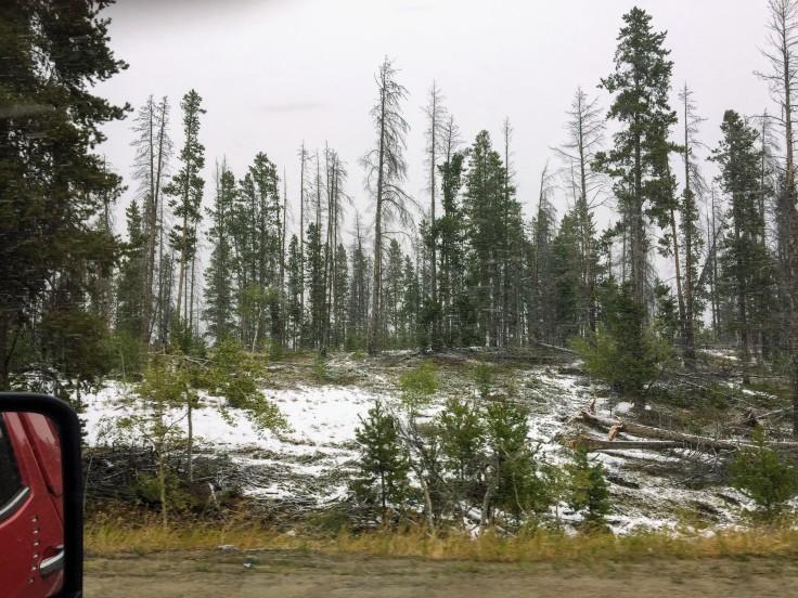 2017-09-20 01 Montana 02 Snow