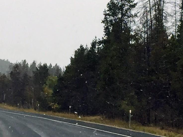 2017-09-20 01 Montana 05 Snow
