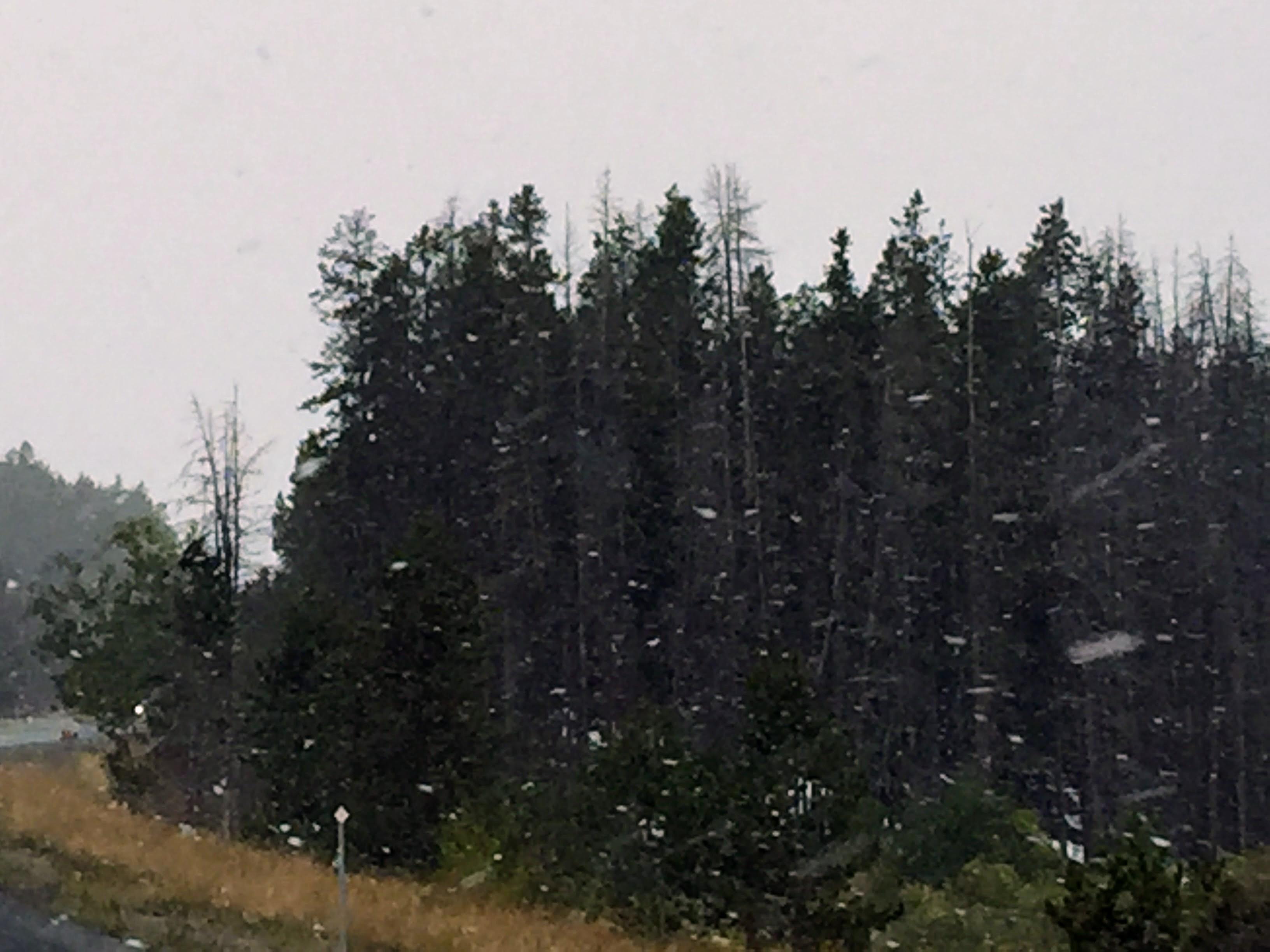 2017-09-20 01 Montana 06 Snow