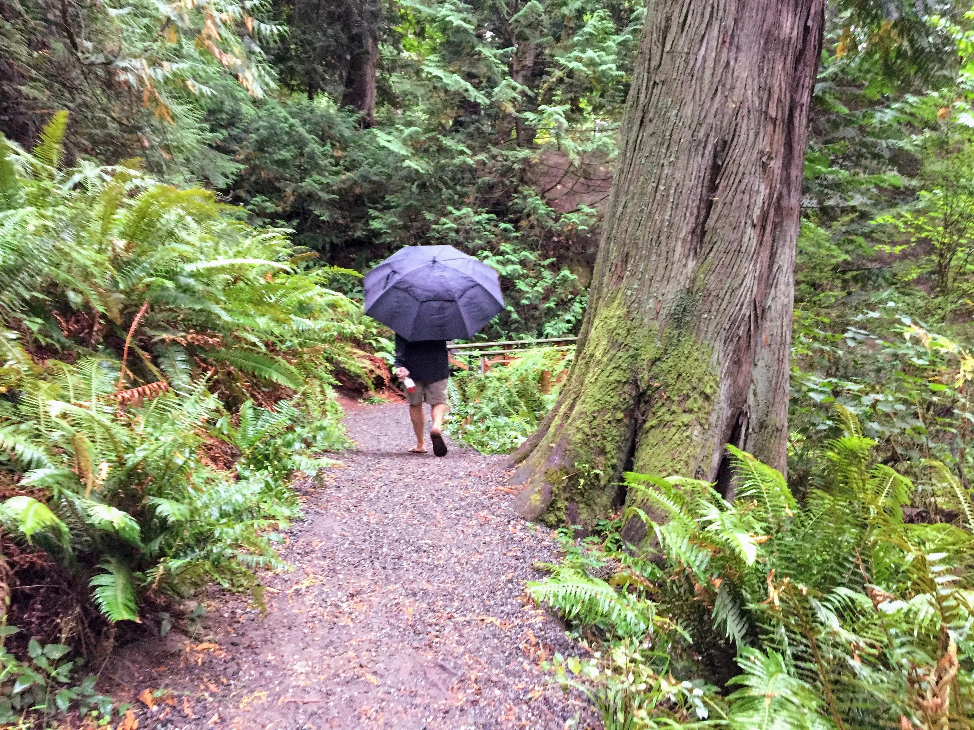 2017-09-25 Washington 01 Larrabee State Park 02