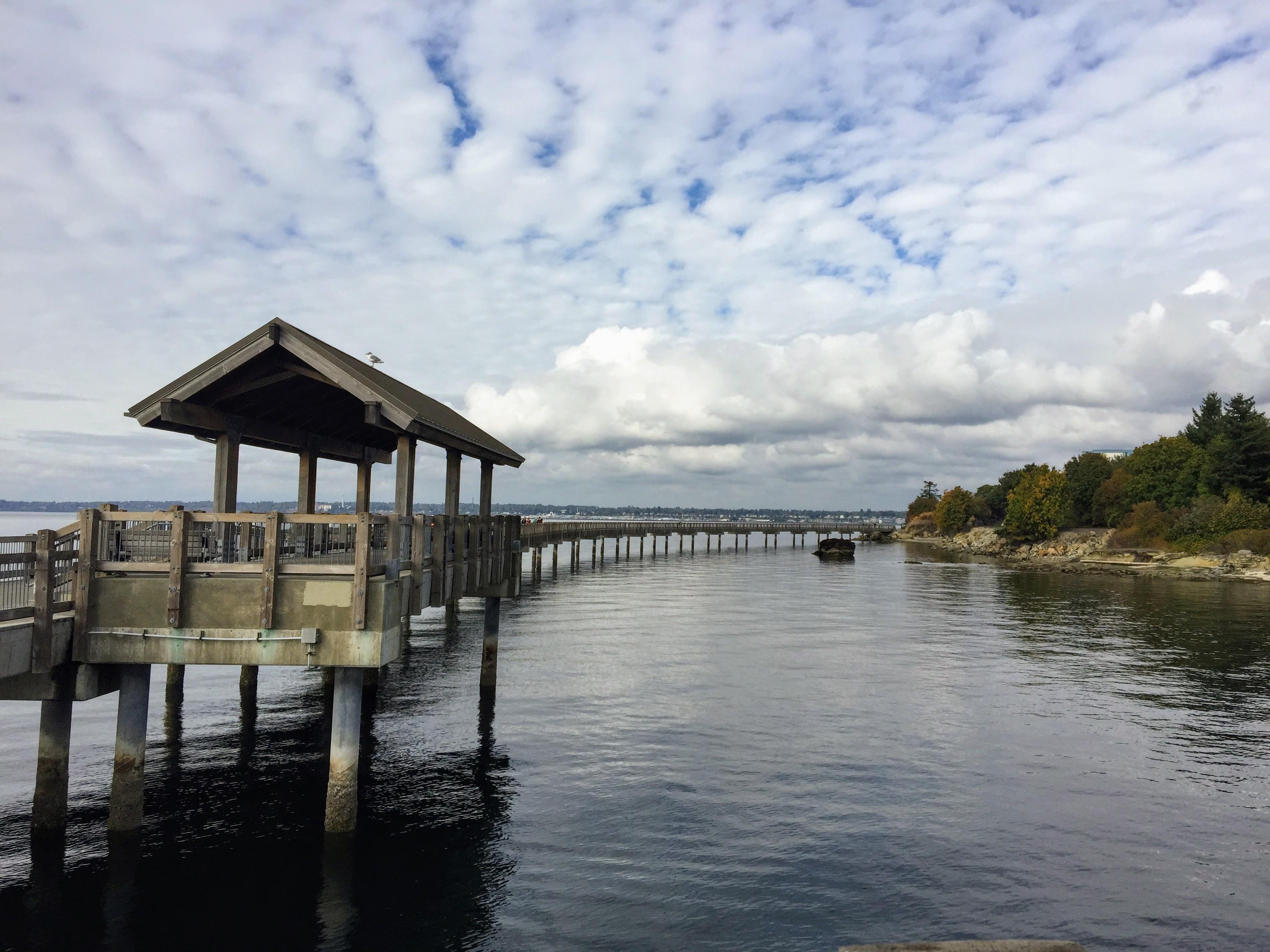 2017-09-25 Washington 02 Fairhaven 05