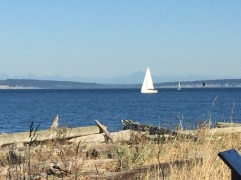 2017-09-28 Washington 02 Port Townsend 05