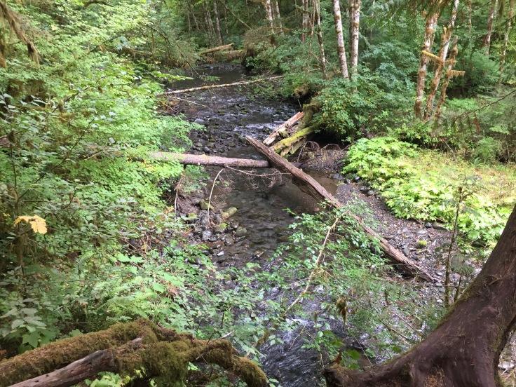 2017-09-29 Washington 03 Hike Marymere 10