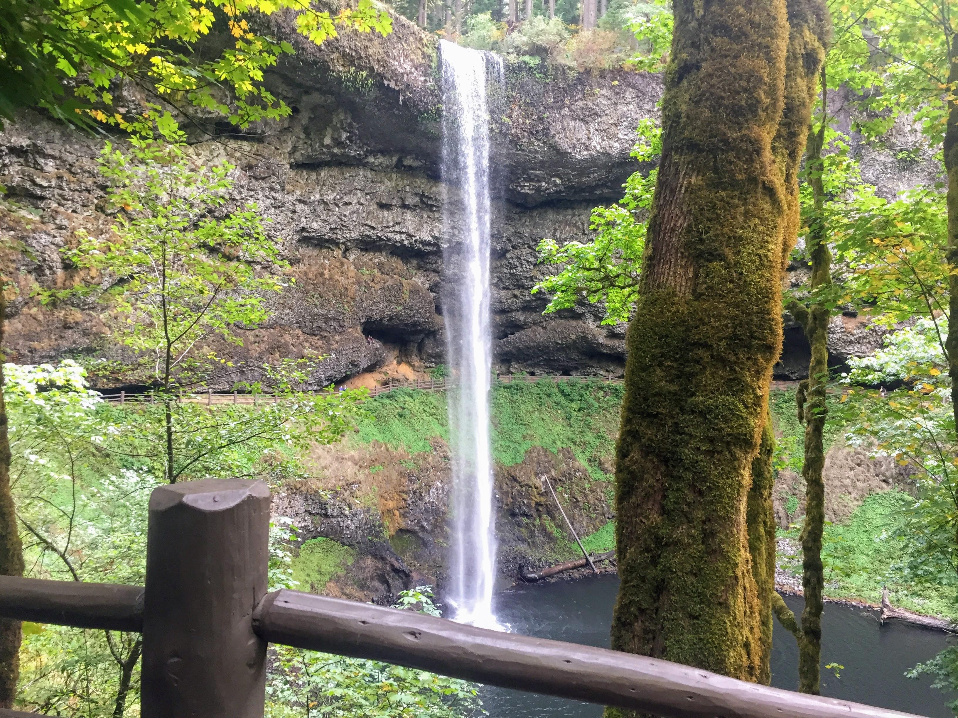 2017-10-01 Oregon 01 Silver Falls 05