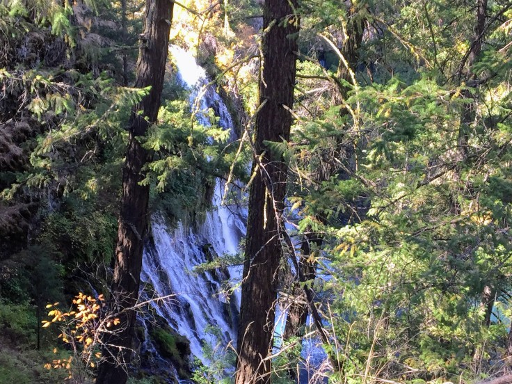 2017-10-05 California 02 Burney Falls 01