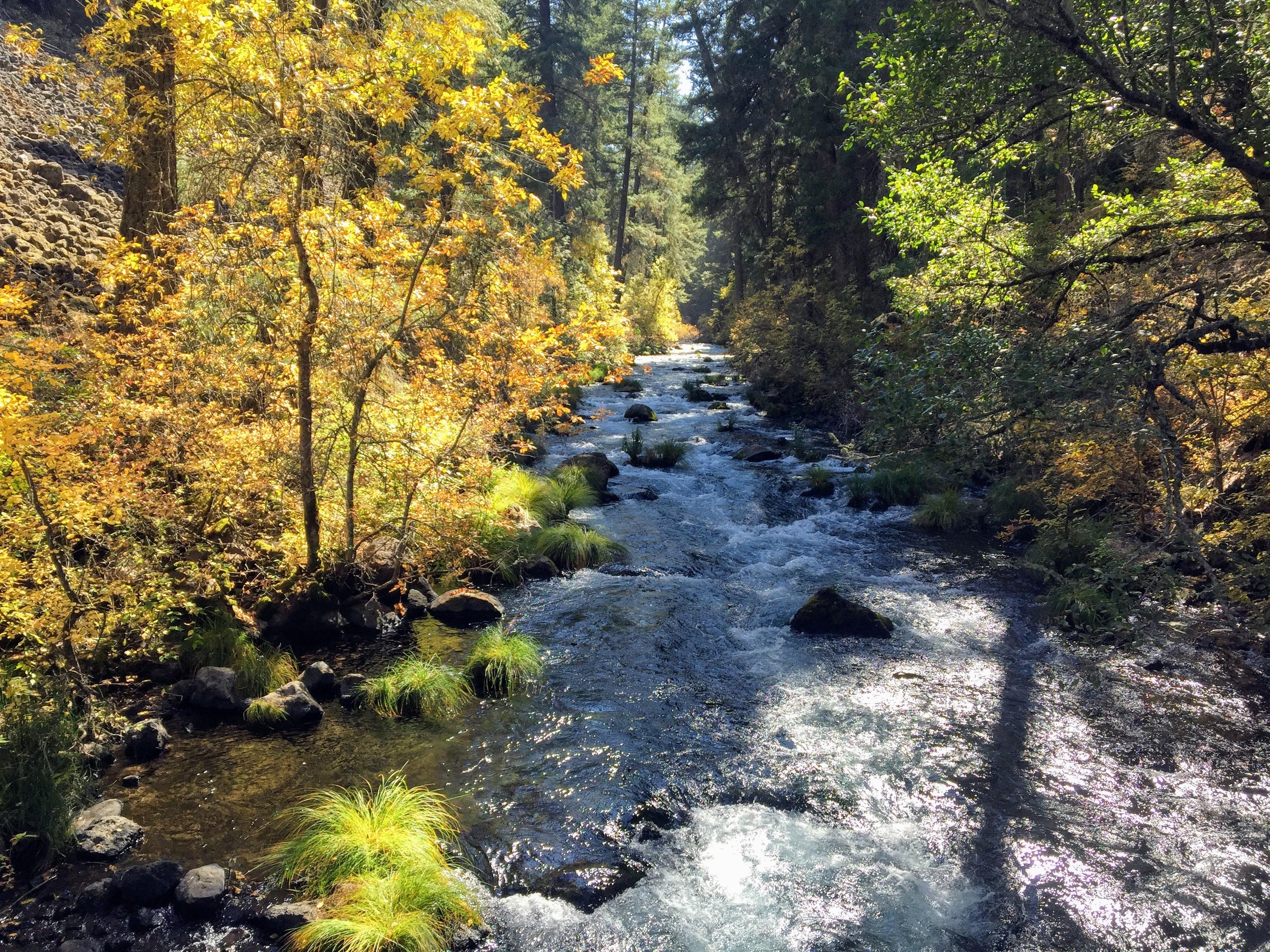 2017-10-05 California 02 Burney Falls 07