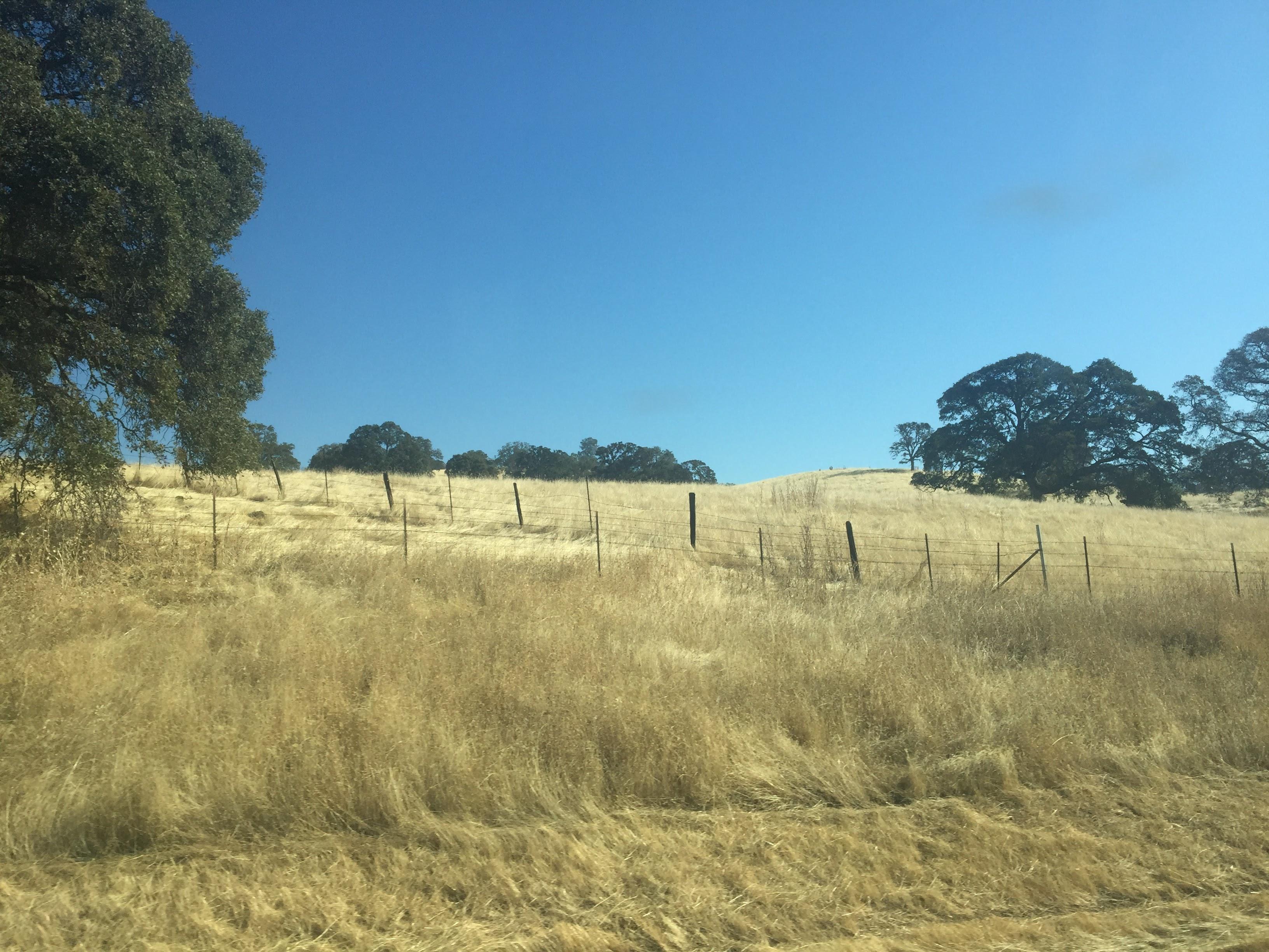 2017-10-14 California 01 Views 01