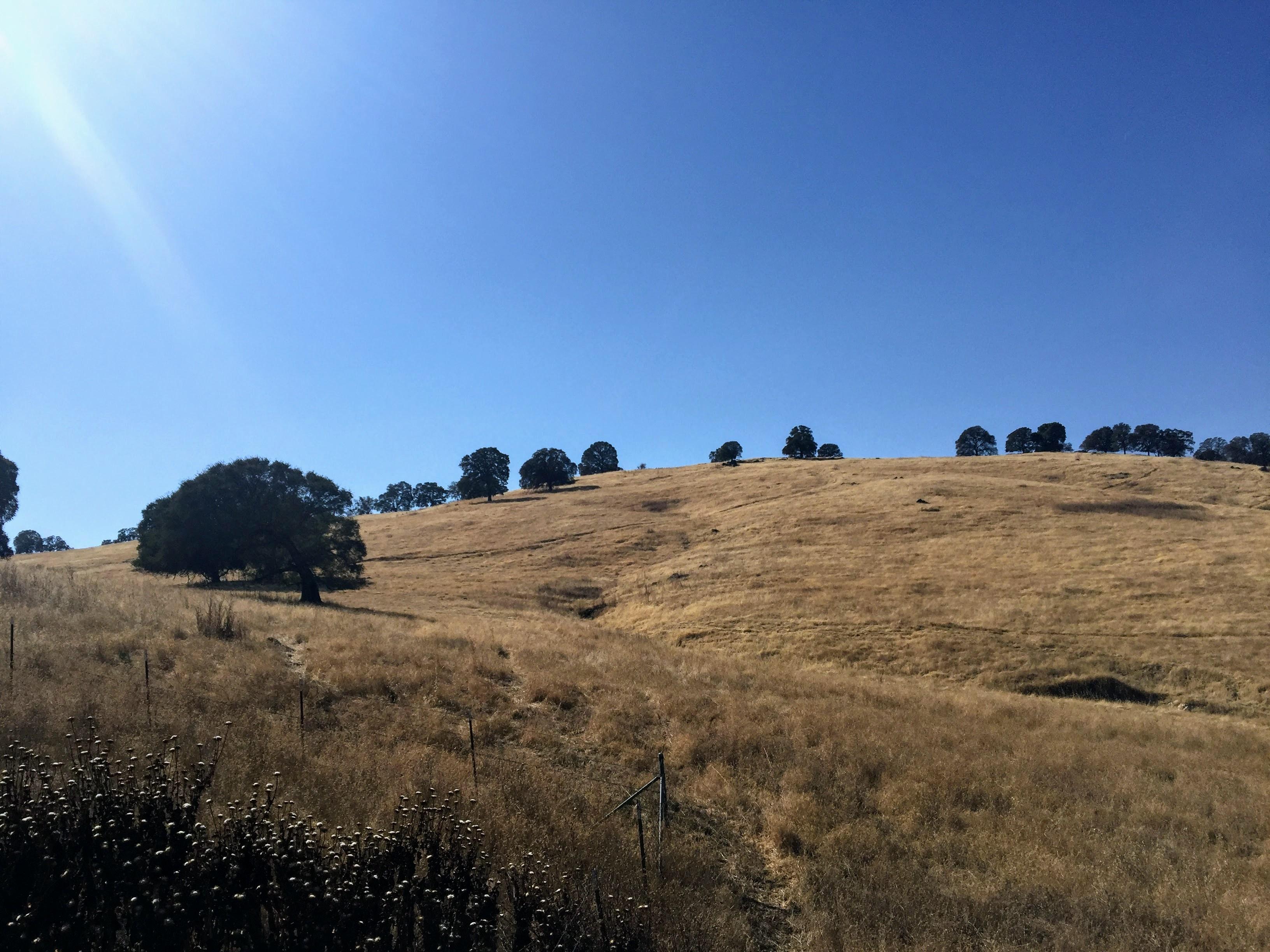 2017-10-14 California 01 Views 03