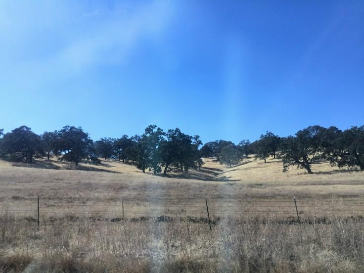 2017-10-14 California 01 Views 04